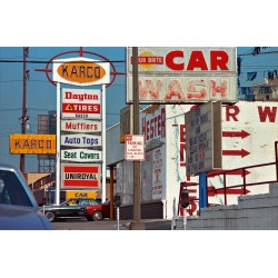 William Eggleston The Democratic Forest Selected Works