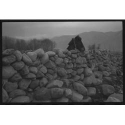 楊延康 (Yang Yankang)作品 - 18石栏中的马 西藏2013