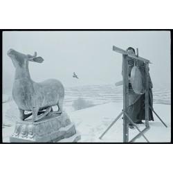 楊延康 (Yang Yankang)作品 - 19神鹿、飞鸟与打锣的僧人 青海2012
