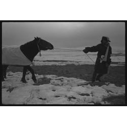 楊延康 (Yang Yankang)作品 - 雪中牵马的青年 青海 2013