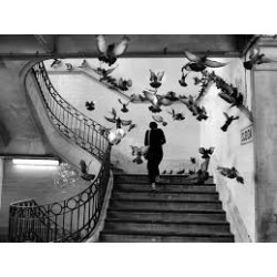 Henri Cartier-Bresson - A Biography