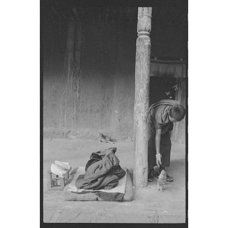 楊延康(Yang Yankang)作品 - 放貓的小僧人