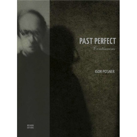 Past Perfect Continuous Igor Posner
