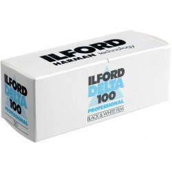Ilford Delta 100 120 Black & White Film