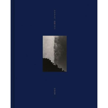沉默中微小的事物 山本昌男(Masao Yamamoto)