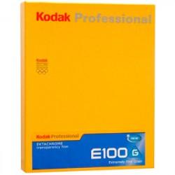 Kodak Professional Ektachrome E100 4x5 Inch Film