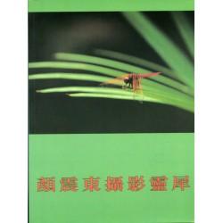 顏震東攝影靈犀