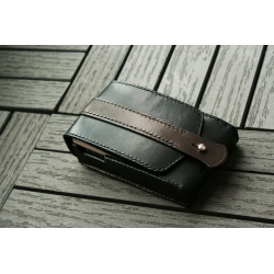 Leather case for Astel and Kern AK380 with AMP